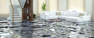 Flooding Protection Subsidy